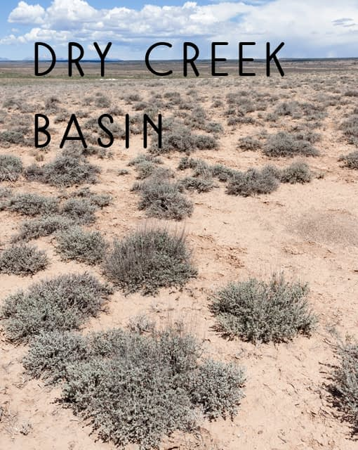 Naming Rights to Dry Creek Basin